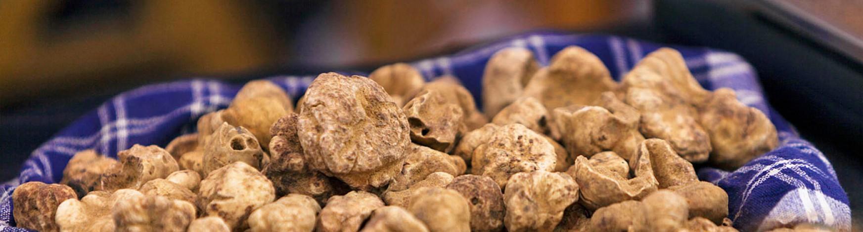 buying-white-truffles-banner
