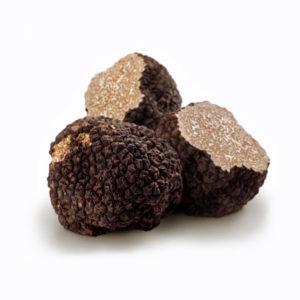 tartufo-nero-uncinatum