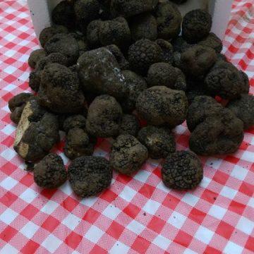 black-truffles