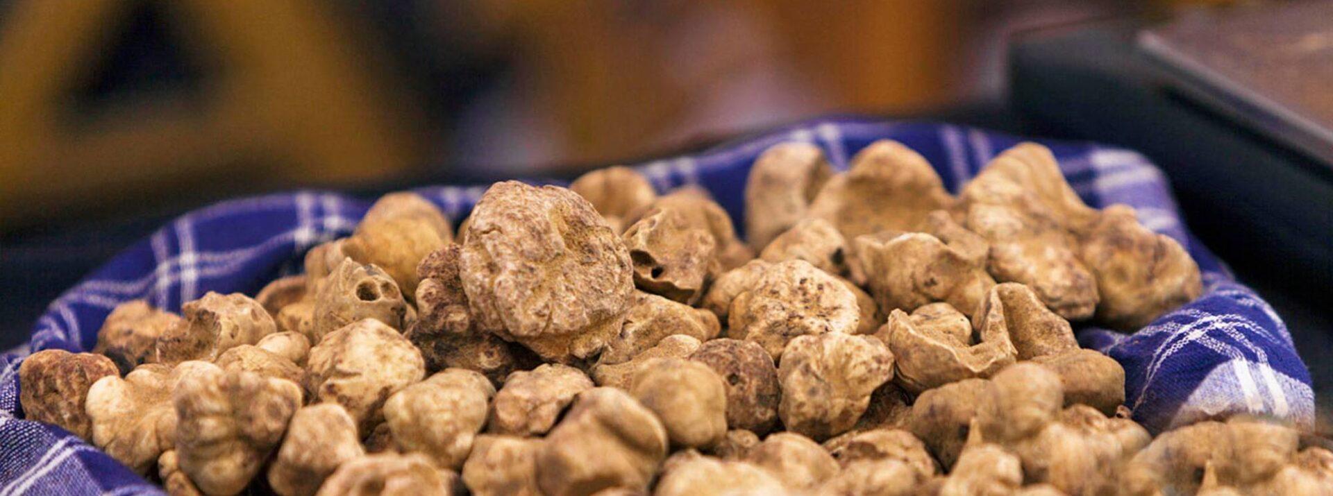 coccia-white-truffles