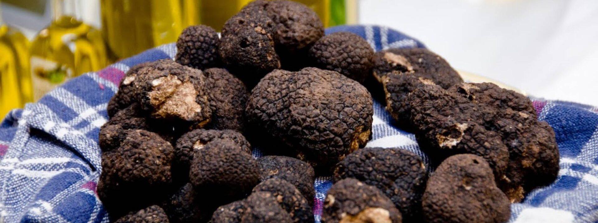 truffles-umbria